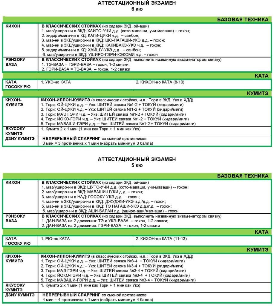 GRBU атт-2013 (6-5 кю)-page-002