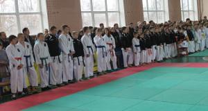 Результаты Чемпионата области по каратэ WKF