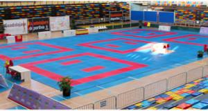 Сегодня 7 ноября начинается Чемпионата мира по каратэ WKF