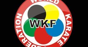 Всеукраїнський турнір із карате WKF «ZVYAGEL OPEN 2015»